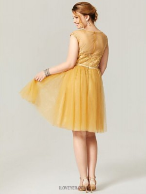 Princess Scoop Neck Knee Length Lace Tulle Australia Cocktail Party Homecoming Dress with Appliques Sash Ribbon Pleats