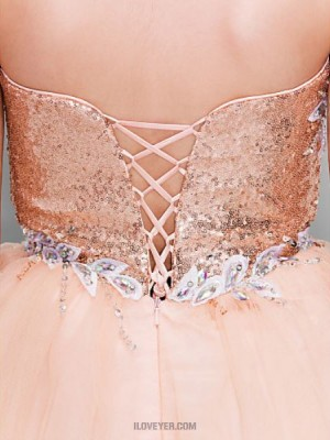 Ball Gown Sweetheart Short Mini Tulle Sequined Prom Dress