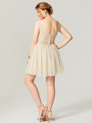 A Line Scoop Neck Short Mini Tulle Australia Cocktail Party Homecoming Dress with Appliques Sash Ribbon