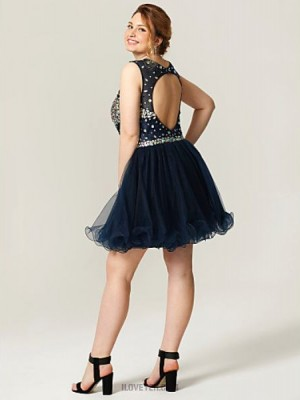 Princess Jewel Neck Short Mini Tulle Australia Cocktail Party Homecoming Dress with Crystal Detailing Pleats