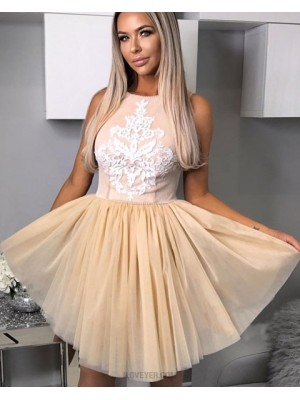 A Line Pink And Champagne Appliqued Jewel Homecoming Dress