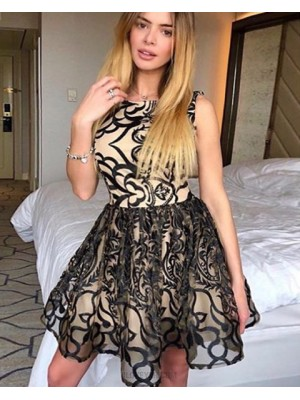 A Line Jewel Nude Lace Pleat Short Homecoming Dress Hd3321